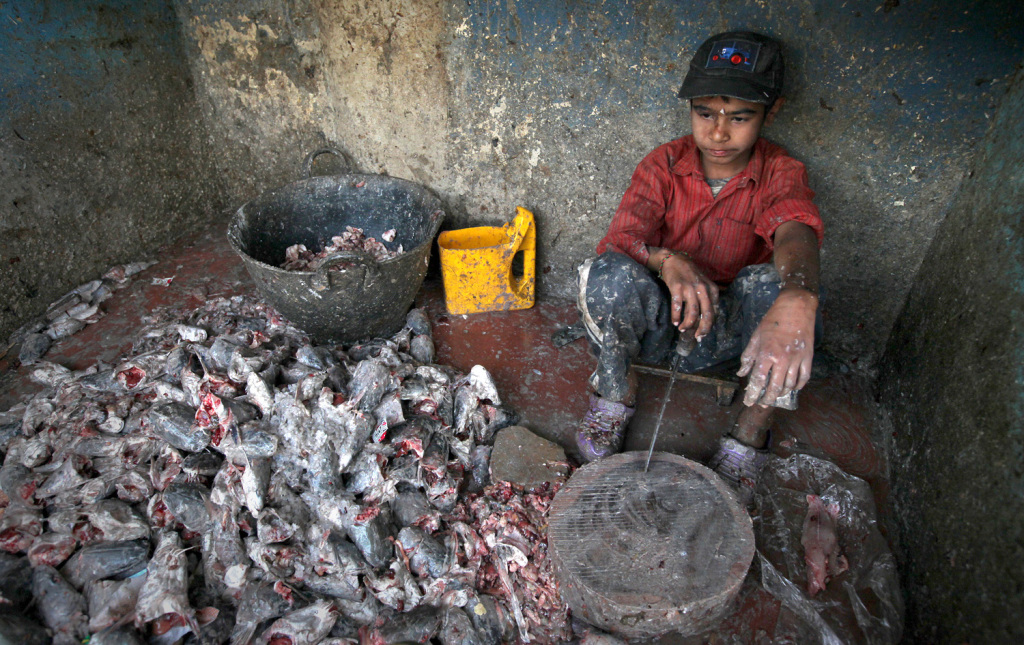 Image: Child laborer.
